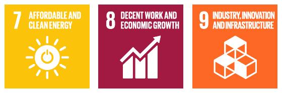 Sustainable development goals SDGs