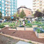 piazza smart, torino, socialfare, smart city